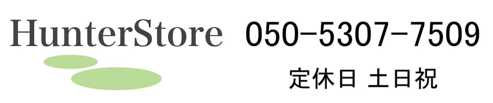 【 公式 】 ハンター シーリングファン日本正規輸入品販売ハンターストア